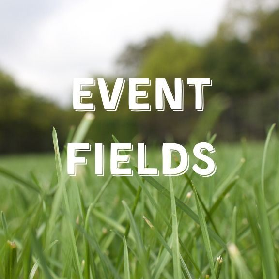 Event Fields r