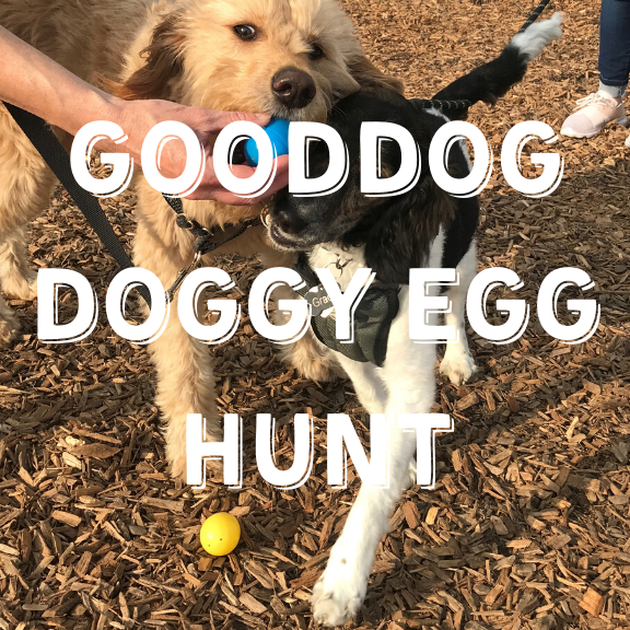 GoodDog Doggy Egg Hunt