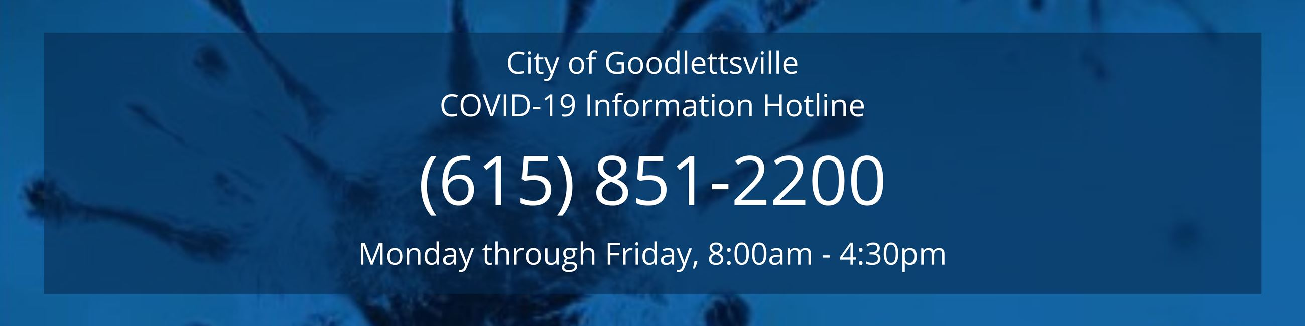 COVID-19 Information Hotline Header